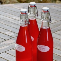 Recipe: plum cordial